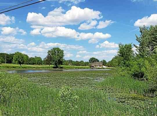 State to find out why Pine River (and Chippewa) are deteriorating